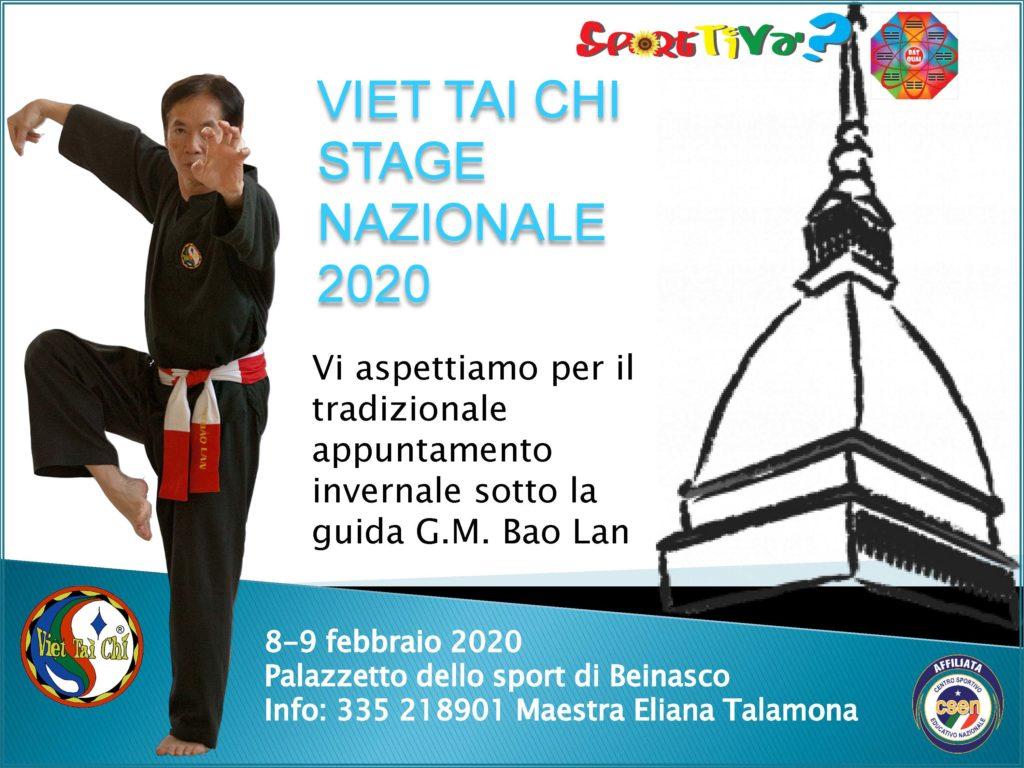 Stage di Viet Tai Chi, Torino 2020